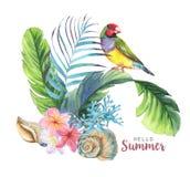 Illustration tirée par la main d'aquarelle des objets tropicaux illustration libre de droits