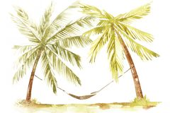 Illustration tirée par la main d'aquarelle des palmiers Littoral de Palm Beach Photos libres de droits
