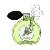 Illustration tirée par la main d'une bouteille de parfum avec le parfum du romarin illustration de vecteur