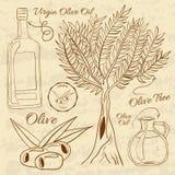 Illustration tirée par la main d'une olive d'ensemble web illustration libre de droits