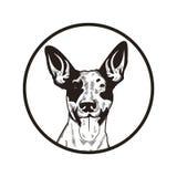 Illustration tirée par la main de conception de vecteur de chien illustration libre de droits