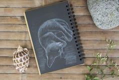 Illustration tirée par la main de minou somnolent Jeune chat par la craie blanche sur le papier noir Image stock