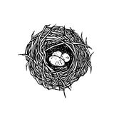 Illustration tirée par la main de nid illustration de vecteur