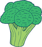 Illustration tirée par la main de page de coloration de brocoli pour l'adulte et le chi Image stock