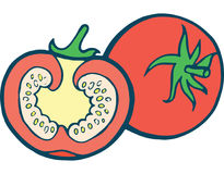 Illustration tirée par la main de page de coloration de tomate pour l'adulte et l'enfant Photo stock