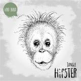 Illustration tirée par la main de style de croquis de visage de singe d'enfant d'orang-outan Photographie stock libre de droits