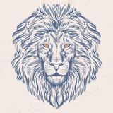 Illustration tirée par la main de tête de lion Photographie stock libre de droits