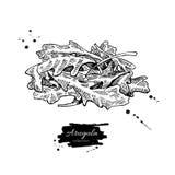 Illustration tirée par la main de vecteur de tas de feuille d'Arugula Objet d'isolement de style gravé par légume détaillé Photographie stock libre de droits
