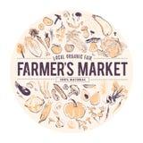 Illustration tirée par la main de vecteur des légumes crus frais Type de croquis Bannière pour la foire de nourriture et le march illustration stock