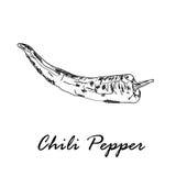 Illustration tirée par la main de vecteur du poivre de piment d'un rouge ardent d'isolement sur le blanc Images stock