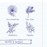 Illustration tirée par la main - ensemble de santé et de nature Photo libre de droits