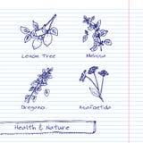 Illustration tirée par la main - ensemble de santé et de nature Photographie stock libre de droits