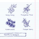 Illustration tirée par la main - ensemble de santé et de nature Photographie stock