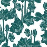 Illustration tir?e par la main de croquis de mod?le sans couture de fleurs de lis Fond floral de vert de cru, illustration libre de droits