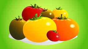 Illustration of tomatoes on a plate Royalty Free Stock Photography