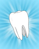 Illustration of a Tooth, on a Blue Slash Backgrou Royalty Free Stock Image