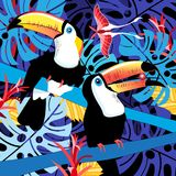 Illustration of toucans in the jungle Royalty Free Stock Images