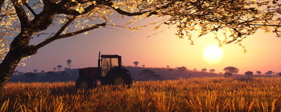 Illustration of a tractor circulating. In wheat field Stock Photo