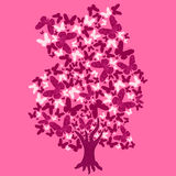 Illustration tree of butterflies. On pink background Stock Image