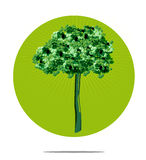 Illustration of a tree with circle background Royalty Free Stock Images