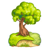 Illustration of a  tree Stock Photography