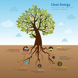 Illustration tree and its wide spread root representing clean e. Nergy in flat infographic diagram template design with decorative icon in blue sky of green Royalty Free Stock Photography