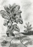 The illustration of a tree. Pencil illustration of a forest tree royalty free illustration