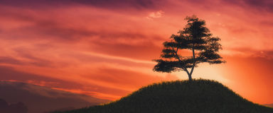 Illustration of a tree and sunset. 3d illustration of a tree and sunset Royalty Free Stock Photos
