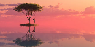 Illustration of a tree and sunset. 3d illustration of a tree and sunset Stock Photography