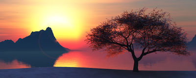Illustration of a tree and sunset Stock Photography