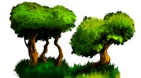 Illustration of a tree. A tree with a green foliage. A large image on an isolated background Stock Image