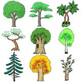 Illustration of trees Stock Images