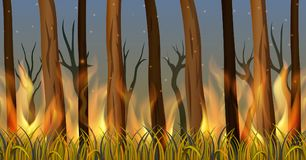 Trees in forest on fire. Illustration of Trees in forest on fire Royalty Free Stock Image