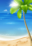 Tropical beach with palm tree Royalty Free Stock Image