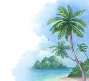Illustration of the tropical beach Royalty Free Stock Photography