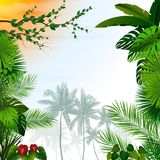 Tropical landscape with palm trees and leaves. Illustration of Tropical landscape with palm trees and leaves Stock Photo
