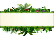 Tropical leaves background. Rectangle plant bamboo frame with space for text. Tropical foliage with horizontal banner. Illustration of Tropical leaves background Royalty Free Stock Photos
