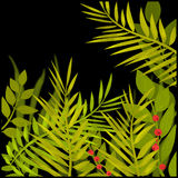 Illustration with tropical leaves on black Stock Images