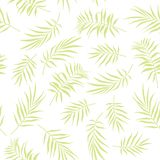 Tropical palm leaves seamless pattern on a white background. Illustration of Tropical palm leaves seamless pattern on a white background Royalty Free Stock Image