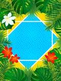 Illustration tropicale de vecteur de cadre La piscine, fleurs, usines de jungle, branches de paumes conçoivent Cadre vertical de  illustration de vecteur