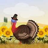 Turkey in the sunflowers field. Illustration of turkey in the sunflowers field Royalty Free Stock Photography