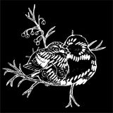 Illustration of two birds on a branch. Black and white drawing. Chalk on a blackboard. Illustration of two birds on a branch. Black and white drawing royalty free illustration
