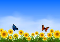 Two butterfly flying in sunflower garden. Illustration of Two butterfly flying in sunflower garden Royalty Free Stock Images