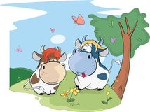 Illustration of a Two Cute Cows Stock Image