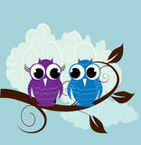 illustration of two  cute owl Royalty Free Stock Photos