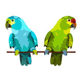 Illustration of two parrots. On white background Stock Photos