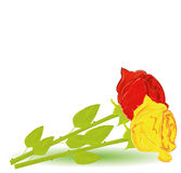 Illustration two roses Royalty Free Stock Photography