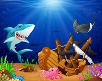 Illustration of under the sea. Illustration of animal under the sea Royalty Free Stock Images
