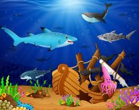 Illustration of under the sea. Illustration of animal under the sea Royalty Free Stock Photo