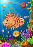 Illustration of under the sea. Illustration of fish under the sea Royalty Free Stock Image